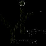 Yannick-developpement